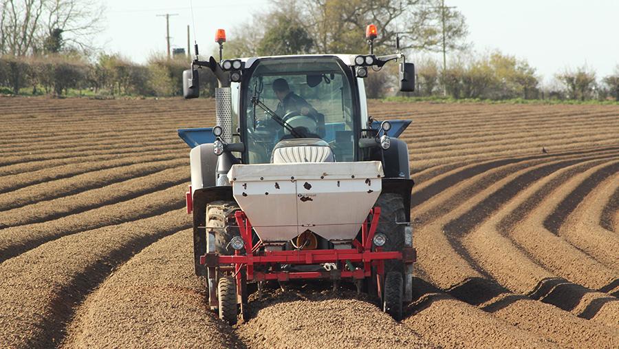 Potato planting by D Vaux & Sons