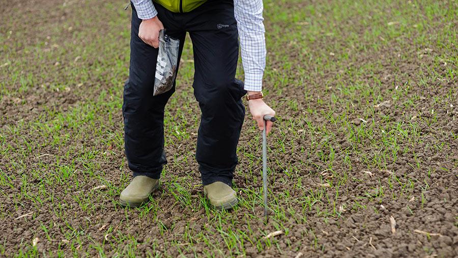 Taking a soil sample