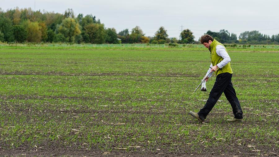Sampling soils