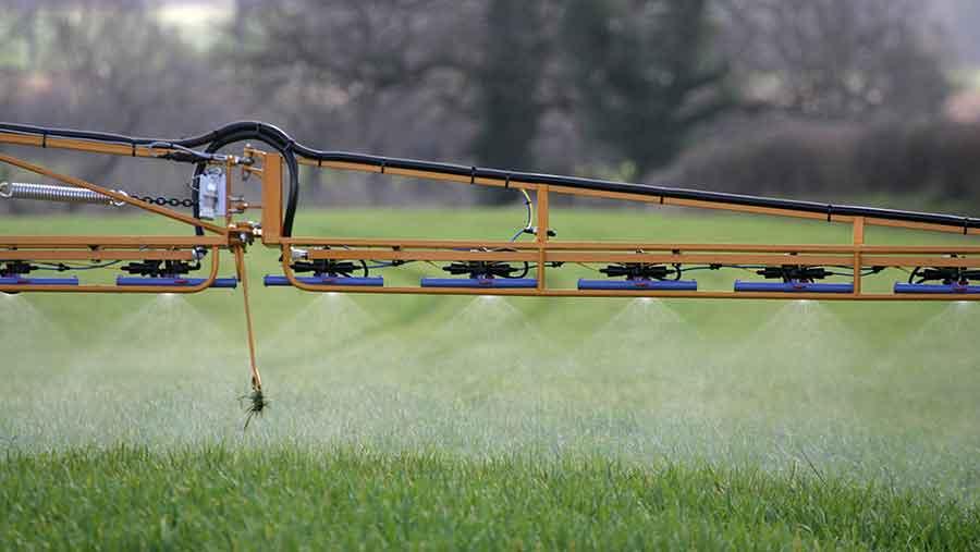 spraying wheat in autumn