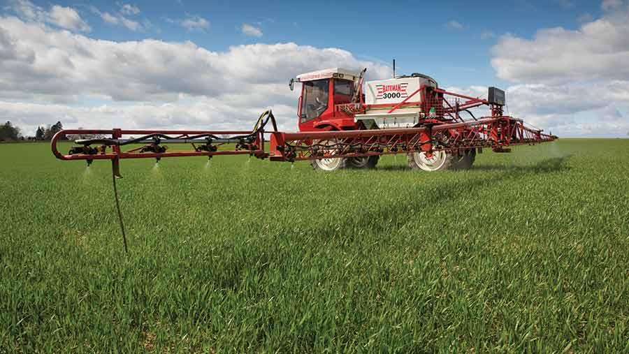spraying-wheat