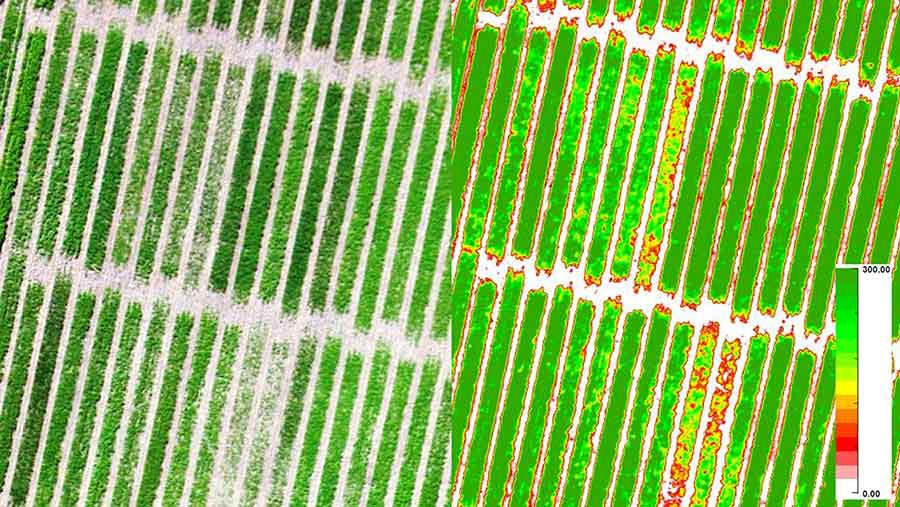 Screen grab from the Precision Hawk app measuring nitrogen