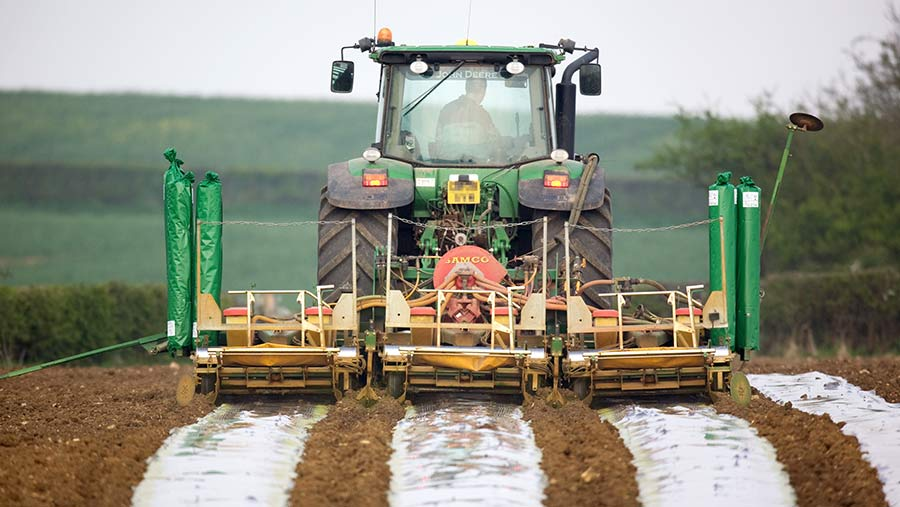 A tractor drilling maize in a field