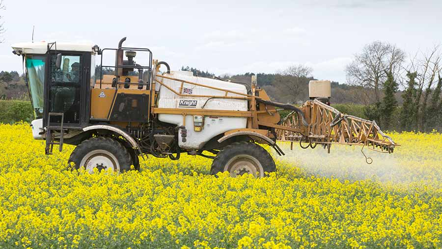 Spraying OSR in flower