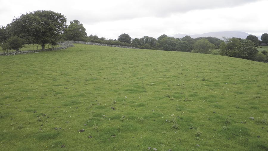 Greuor Farm
