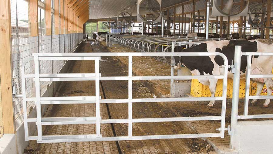 Sturdy Built adjustable steel gate