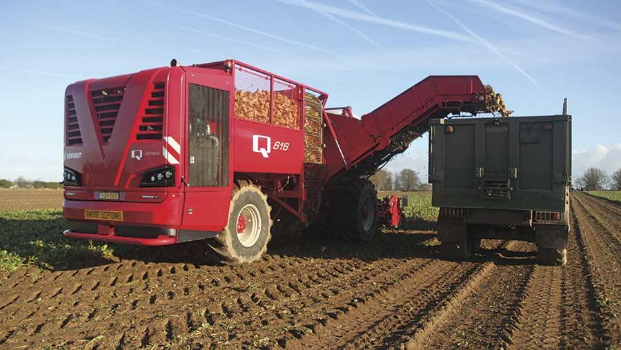 A Vervaet beet harvester unloads beet into a truck as it travels through a field