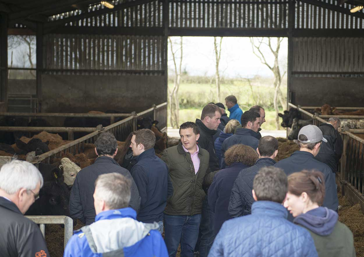 RCP-County-Antrim-shed