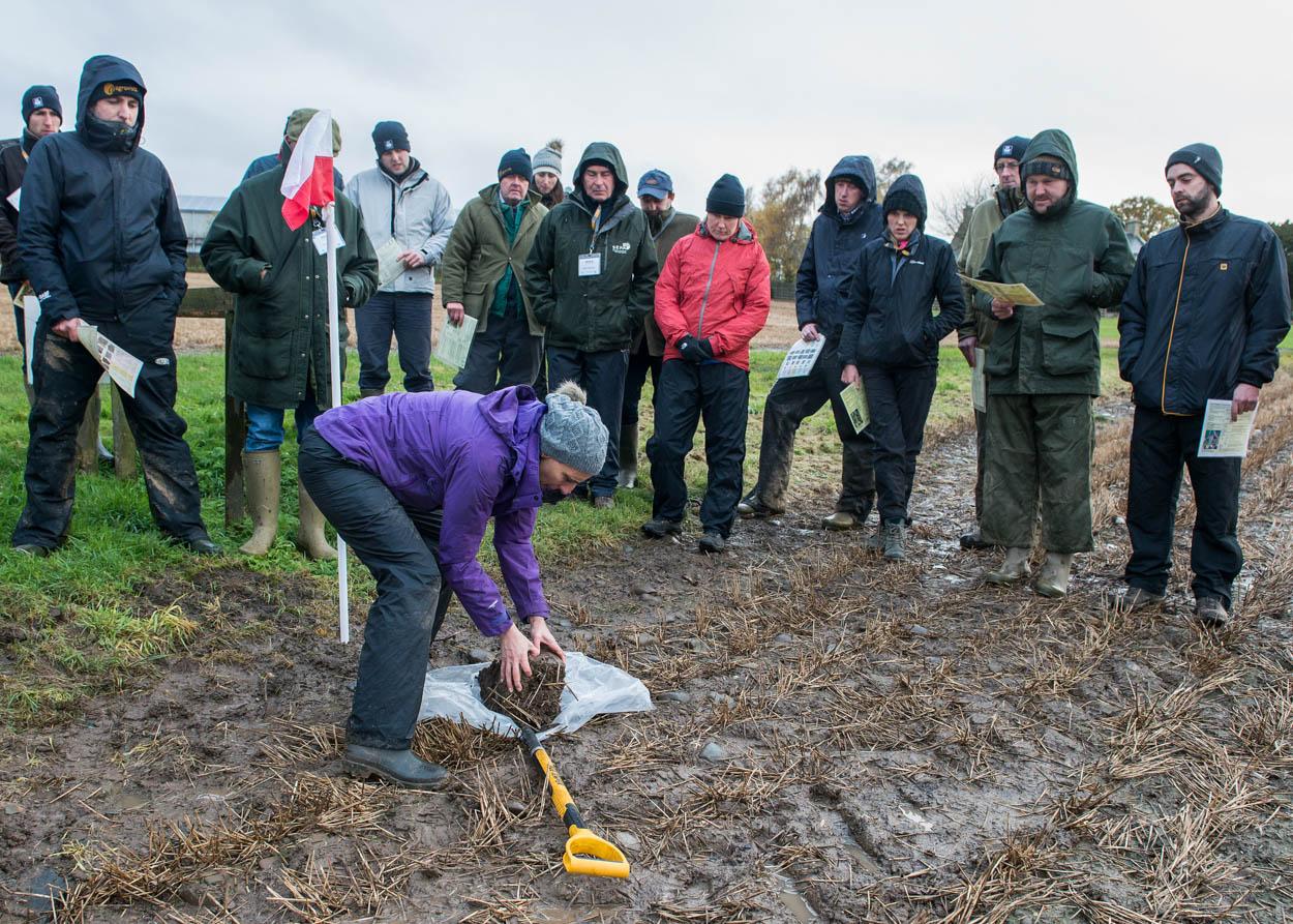 Soils in Practice