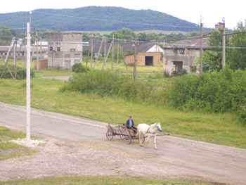 Traditional transport – fast being outmoded