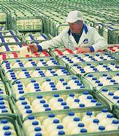 Arla crates of milk - large