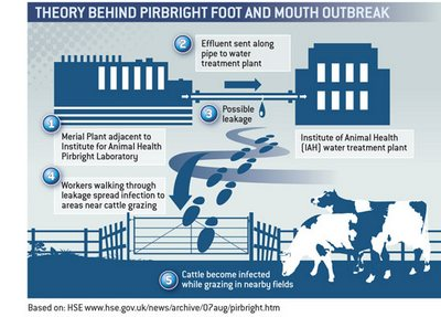 Pirbright foot and mouth theory