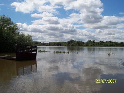 Flooded wheat in Bucks