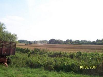 Flooded field in bucks 3