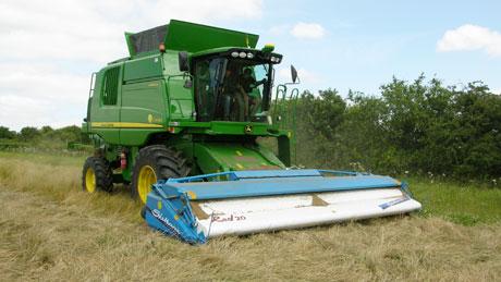 Grass-seed-harvest-2