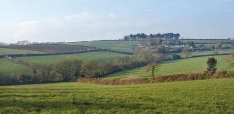 Leyonne-Farm-3.jpg