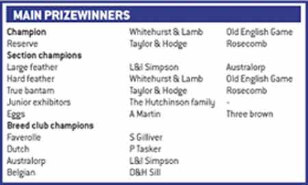 main poultry prizewinners