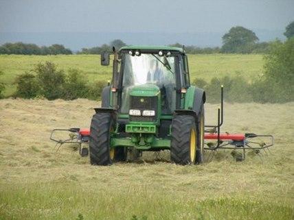 grass spreading UGC