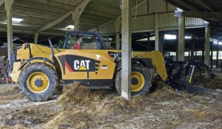 CAT large