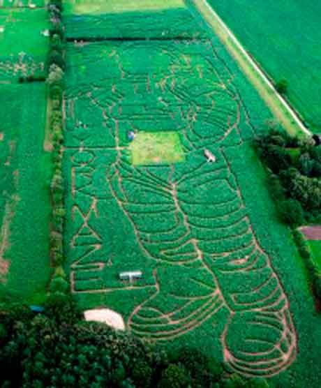 astronaut maize maze
