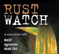 Rust Watch