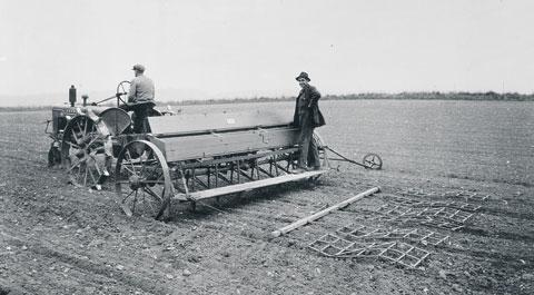 Beet drill