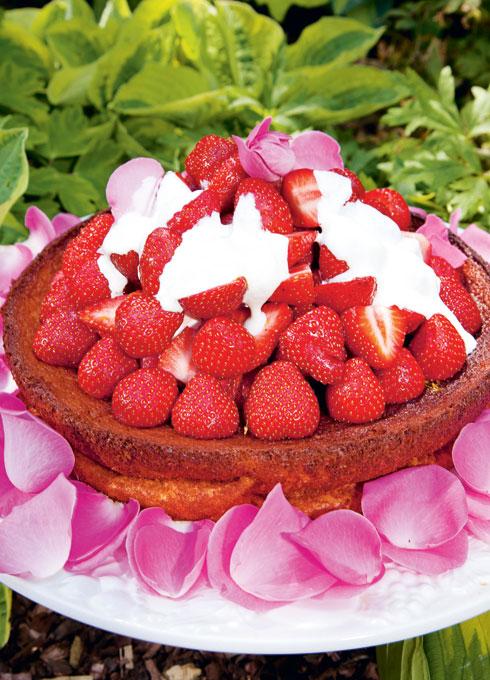 Turkish Yoghurt Cake with Strawberries