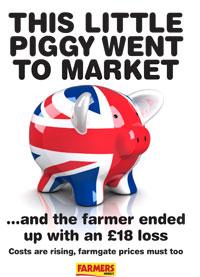 pig poster 2 thumb