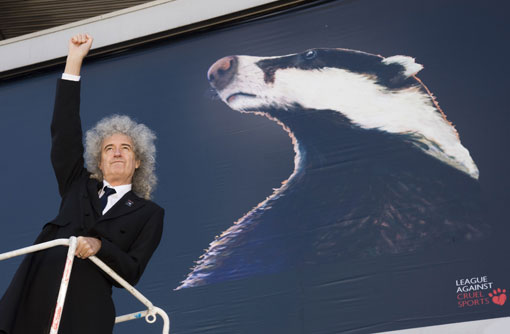 Brian May at launch of anti-cull campaign (c) Rex
