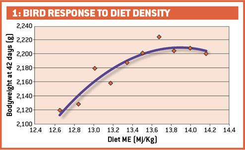 Bird response to diet density