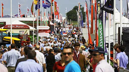 Crowds at Cereals 2014