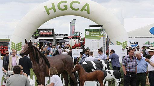 Horse models at Cereals 2014