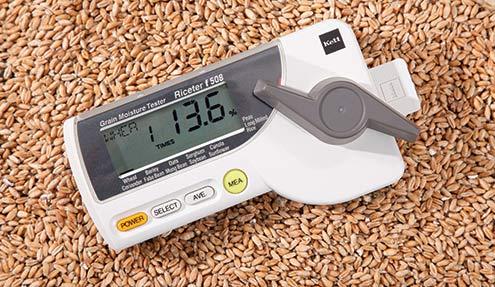 Riceter-F508
