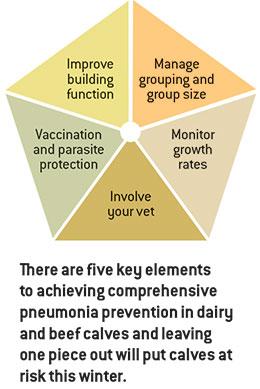 pneumonia five-point plan